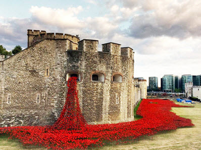 Poppy display outside the Tower of London